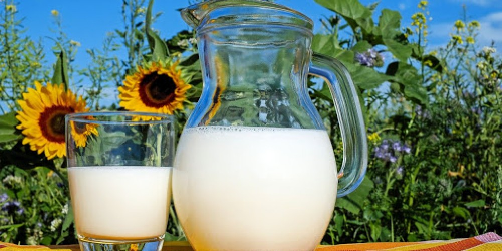 Bosnia Sees Decline in Total Milk Production